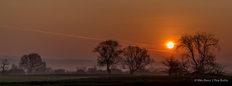 Somerset Levels, dawn