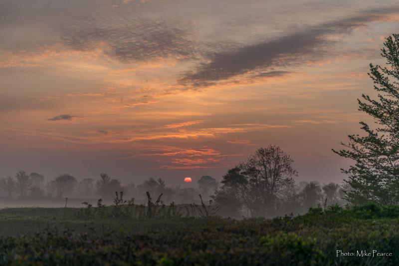 Somerset Levels Sunrise